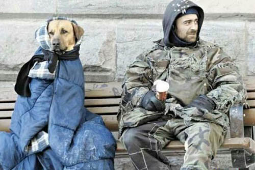 Homeless man, i.e., bum, fights to run for office… | THE B ...