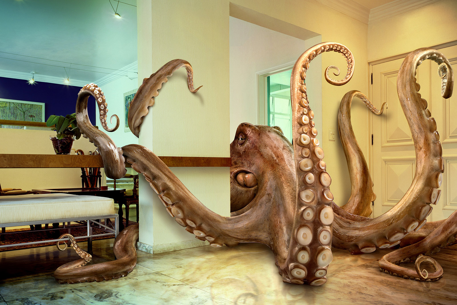 Spongebob evolution Octopus-big-large-giant-funny