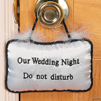 http://thebsreport.files.wordpress.com/2010/01/wedding-night.jpg