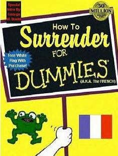 surrender_for_dummies