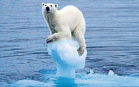 climate-change_1509200c.jpg